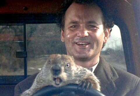 groundhog-day-bill-murray-day-ebay'